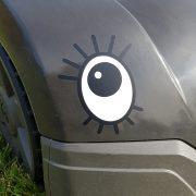 Ögon med fransar i närbild