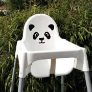 A panda in the bamboo
