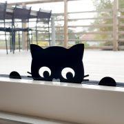 En liten katt kikar in genom fönstret