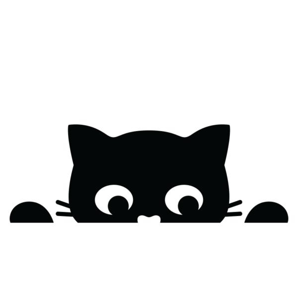 Liten katt kikar över kanten
