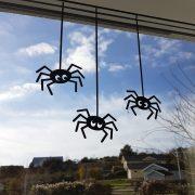 Spindelsällskap i fönstret