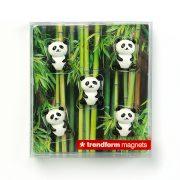 Pandamagneter i passande förpackning